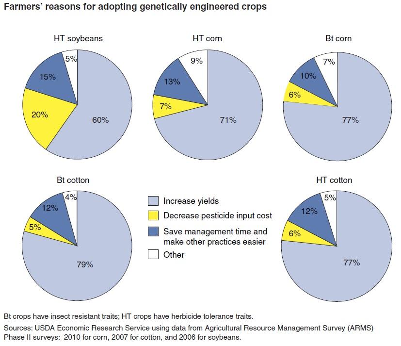 ragione OGM